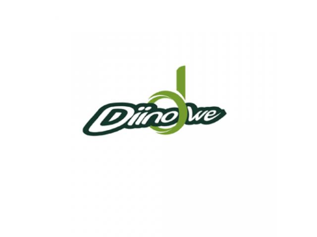 Diinowe